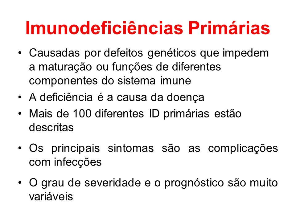 Imunodeficiências Primárias Causadas por defeitos genéticos que impedem a maturação ou funções de diferentes componentes do sistema imune A deficiênci