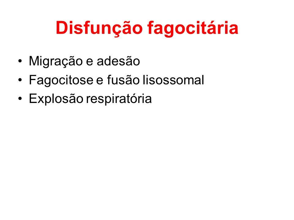 Disfunção fagocitária Migração e adesão Fagocitose e fusão lisossomal Explosão respiratória