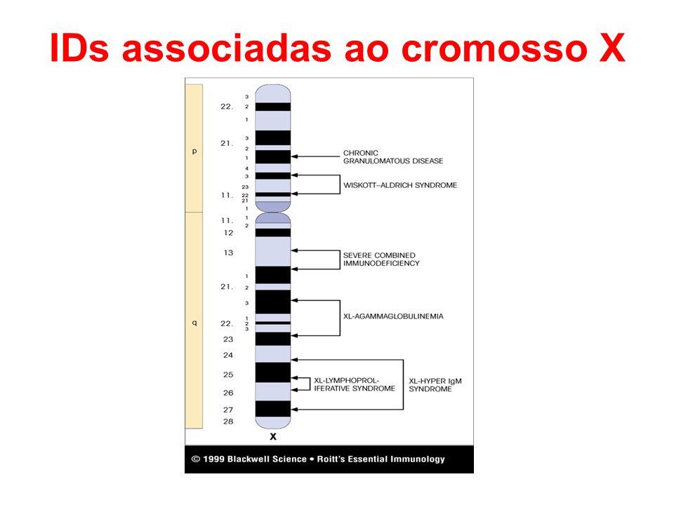 IDs associadas ao cromosso X
