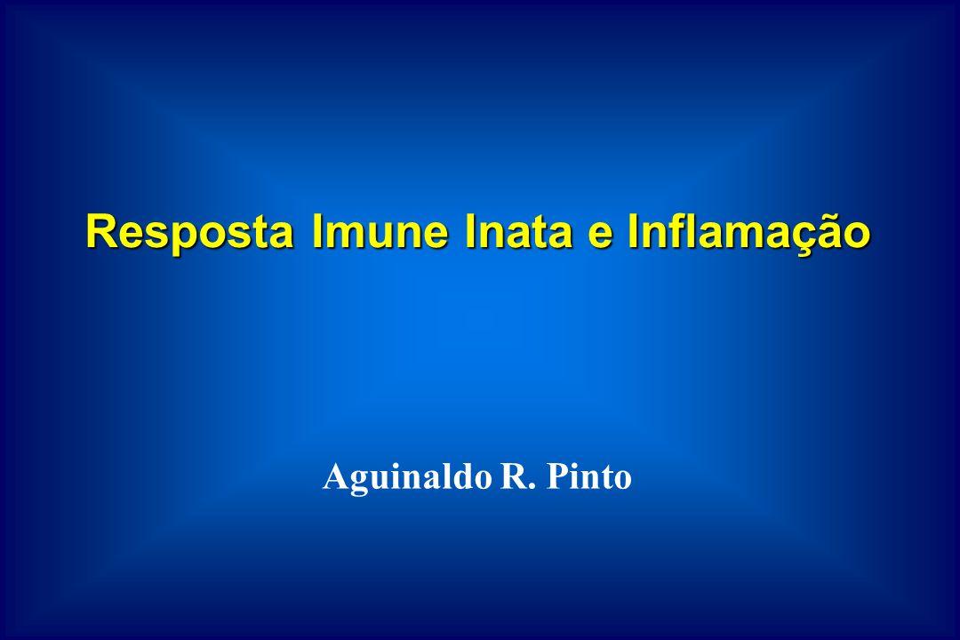 Imunidade inata = natural ou nativa Defesa presente em indivíduos saudáveis, desde o nascimento e preparada para bloquear a entrada de micróbios e eliminar micróbios que têm sucesso entrando em tecidos.