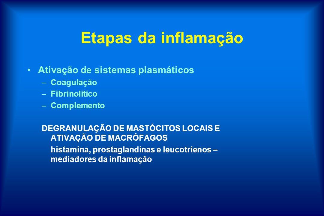Etapas da inflamação Ativação de sistemas plasmáticos –Coagulação –Fibrinolítico –Complemento DEGRANULAÇÃO DE MASTÓCITOS LOCAIS E ATIVAÇÃO DE MACRÓFAG