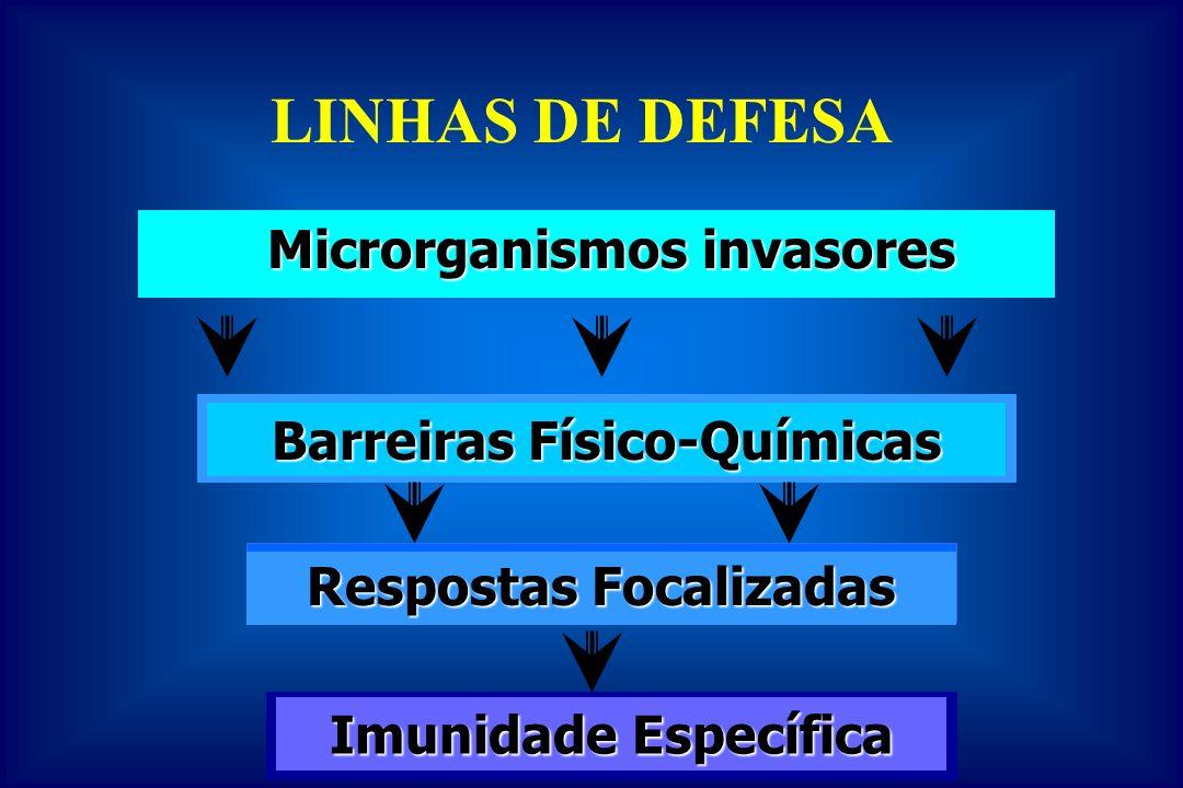 Componentes da Imunidade Inata X Adquirida INATA INATA –Barreiras Físicas Pele, muco, cíliosPele, muco, cílios –Barreiras Químicas pH, lisozima, INF, complementopH, lisozima, INF, complemento –Células NK, macrófagos e neutrófilosNK, macrófagos e neutrófilos ADQUIRIDA –Produtos Secretados –Células (Linfócitos)