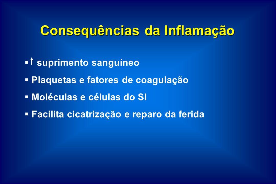 Consequências da Inflamação suprimento sanguíneo Plaquetas e fatores de coagulação Moléculas e células do SI Facilita cicatrização e reparo da ferida
