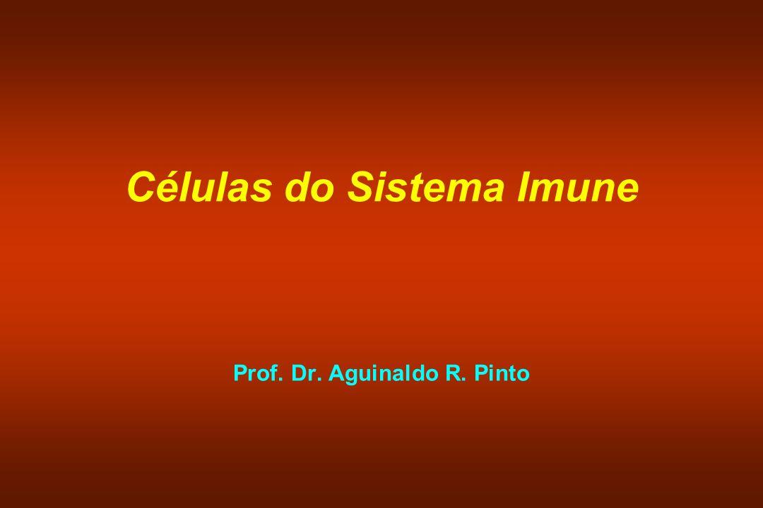 Células Linfócitos NK Células Dendríticas Macrófagos e Monócitos Neutrófilos Eosinófilos Mastócitos Basófilos