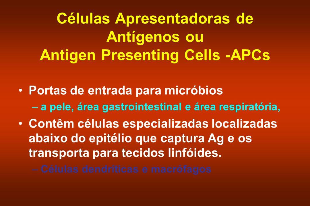 Células Apresentadoras de Antígenos ou Antigen Presenting Cells -APCs Portas de entrada para micróbios –a pele, área gastrointestinal e área respirató