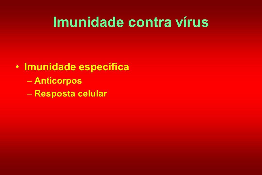 Imunidade contra vírus Imunidade específica –Anticorpos –Resposta celular