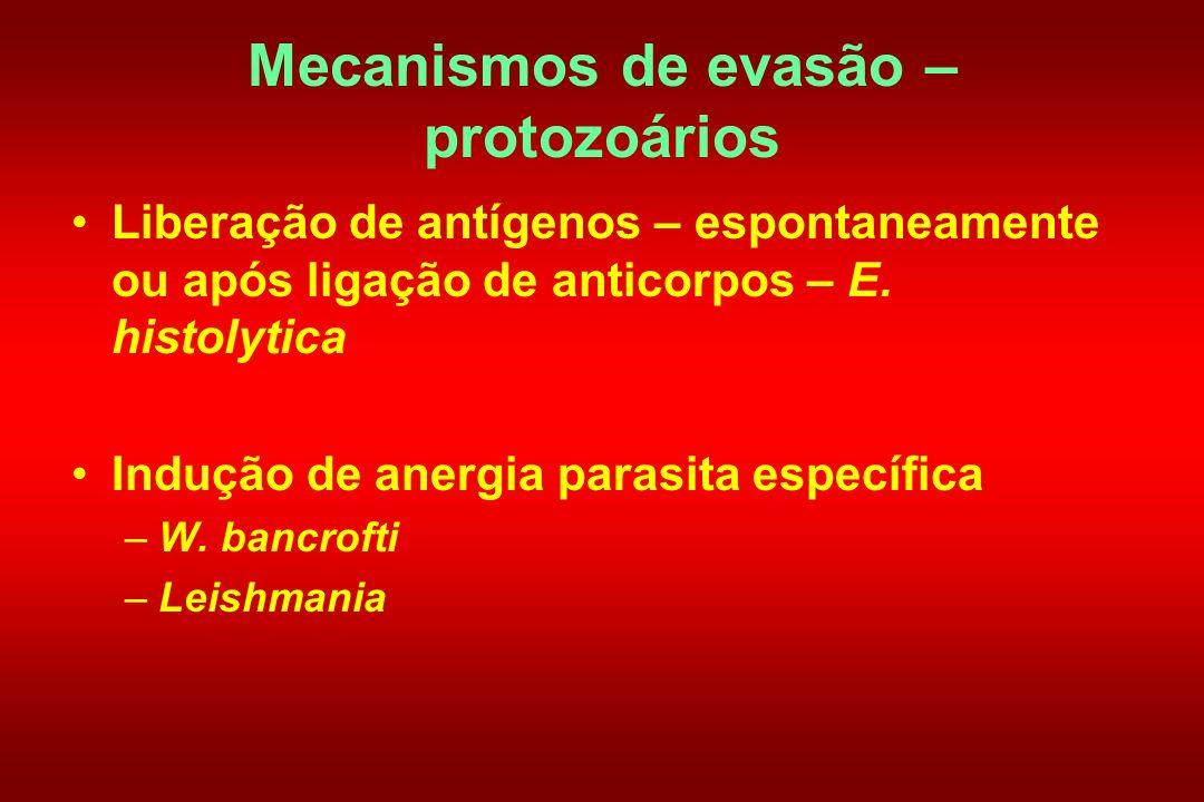 Mecanismos de evasão – protozoários Liberação de antígenos – espontaneamente ou após ligação de anticorpos – E. histolytica Indução de anergia parasit
