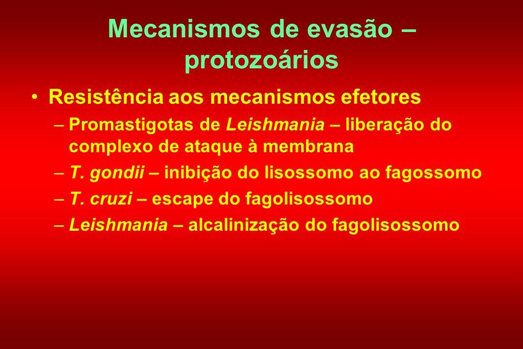 Mecanismos de evasão – protozoários Resistência aos mecanismos efetores –Promastigotas de Leishmania – liberação do complexo de ataque à membrana –T.