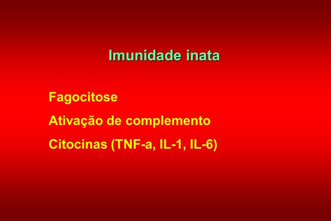 Imunidade inata Fagocitose Ativação de complemento Citocinas (TNF-a, IL-1, IL-6)