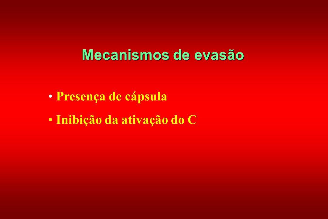 Mecanismos de evasão Presença de cápsula Inibição da ativação do C