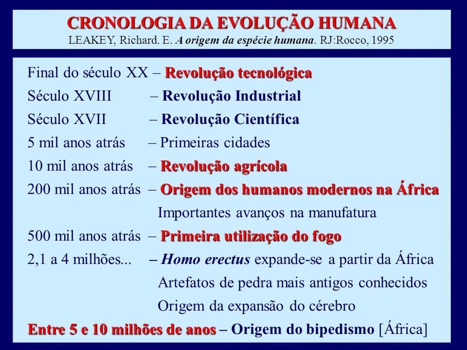 CRONOLOGIA DA EVOLUÇÃO HUMANA LEAKEY, Richard. E. A origem da espécie humana. RJ:Rocco, 1995 Revolução tecnológica Final do século XX – Revolução tecn