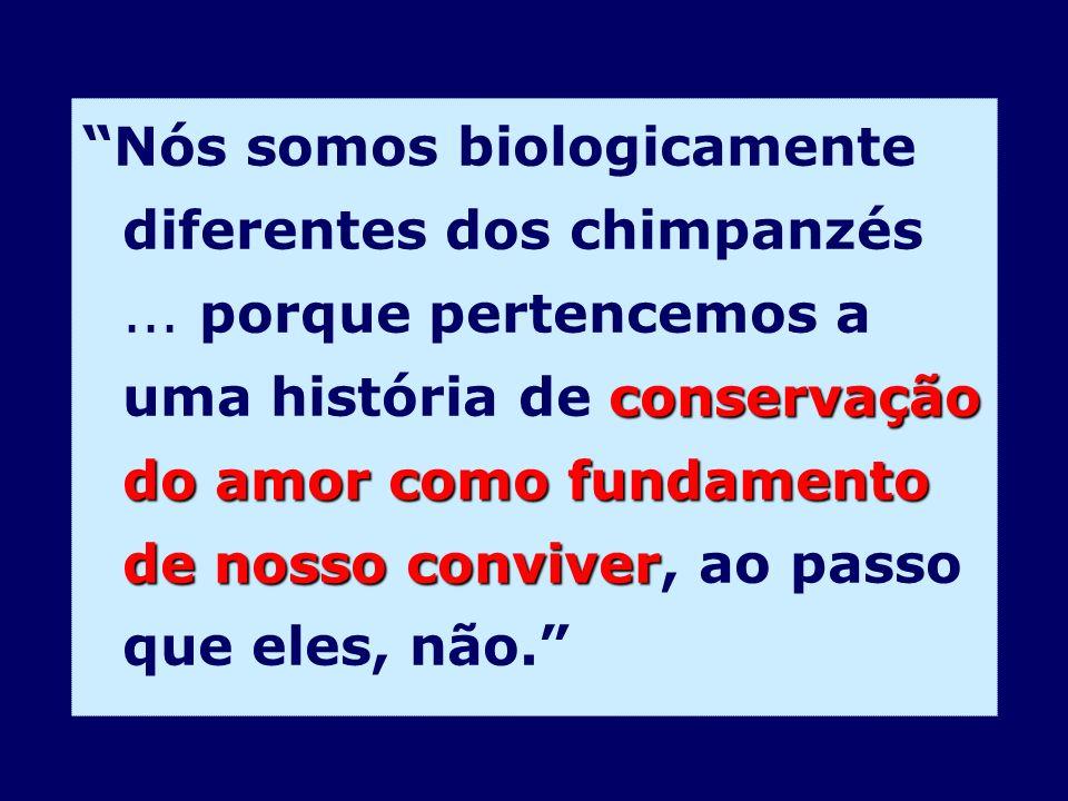 conservação do amor como fundamento de nosso conviver Nós somos biologicamente diferentes dos chimpanzés... porque pertencemos a uma história de conse