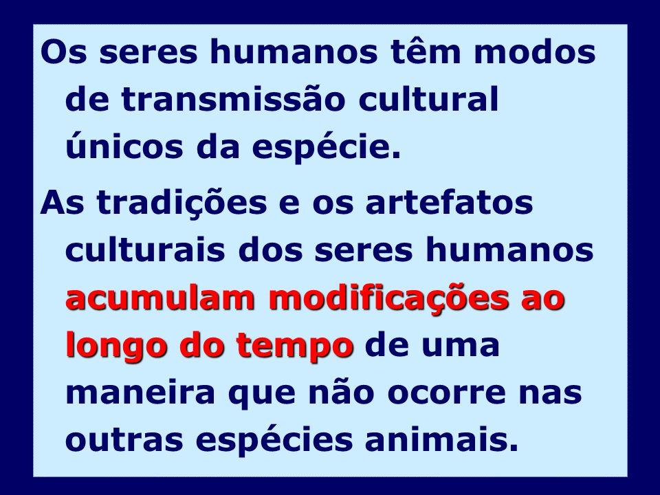 Os seres humanos têm modos de transmissão cultural únicos da espécie. acumulam modificações ao longo do tempo As tradições e os artefatos culturais do