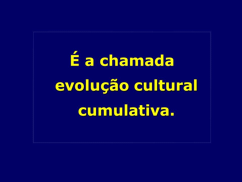 evolução cultural cumulativa É a chamada evolução cultural cumulativa.