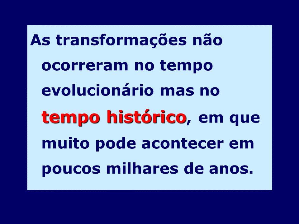 tempo histórico As transformações não ocorreram no tempo evolucionário mas no tempo histórico, em que muito pode acontecer em poucos milhares de anos.