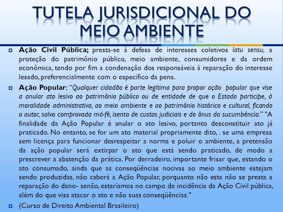 é possível a instauração de procedimento preparatório de inquérito civil, que, no entanto, se sujeita à regra de deliberação do Conselho Superior do M