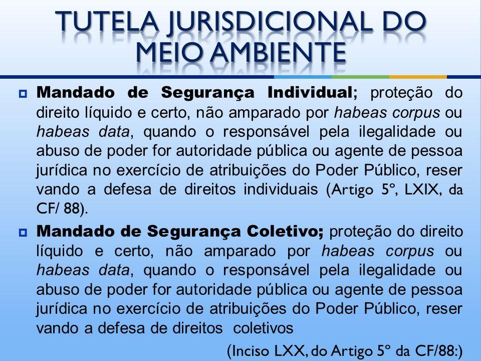 Ação Civil Pública; presta-se à defesa de interesses coletivos latu sensu, a proteção do patrimônio público, meio ambiente, consumidores e da ordem ec