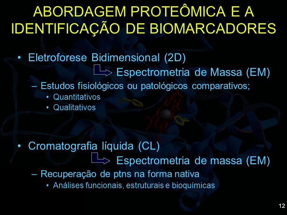 12 Eletroforese Bidimensional (2D) Espectrometria de Massa (EM) –Estudos fisiológicos ou patológicos comparativos; Quantitativos Qualitativos Cromatog