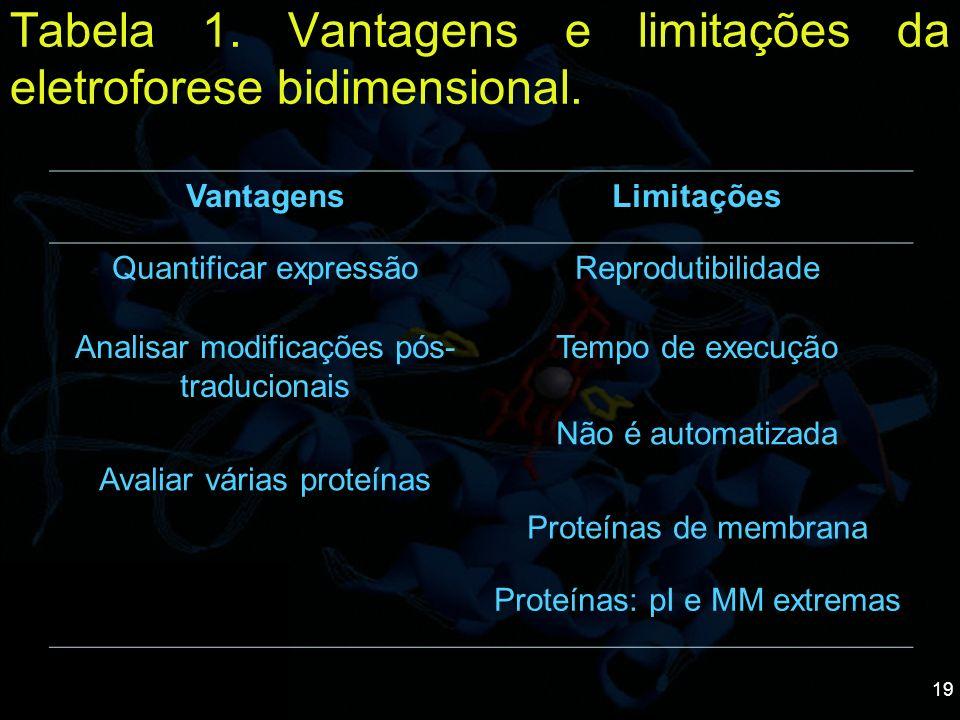 19 Tabela 1. Vantagens e limitações da eletroforese bidimensional. VantagensLimitações Quantificar expressãoReprodutibilidade Analisar modificações pó