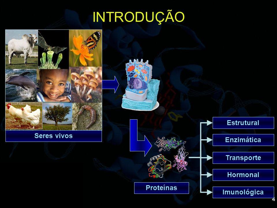 4 INTRODUÇÃO Proteínas Estrutural Transporte Enzimática Hormonal Imunológica Seres vivos