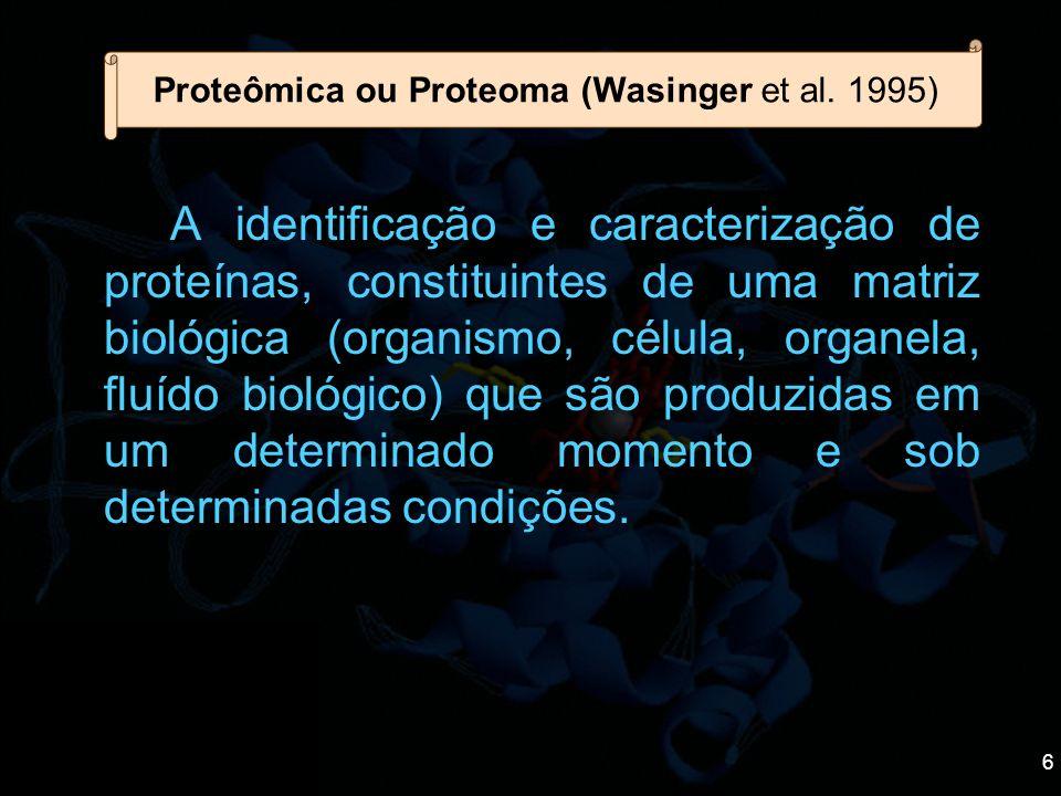 6 A identificação e caracterização de proteínas, constituintes de uma matriz biológica (organismo, célula, organela, fluído biológico) que são produzi