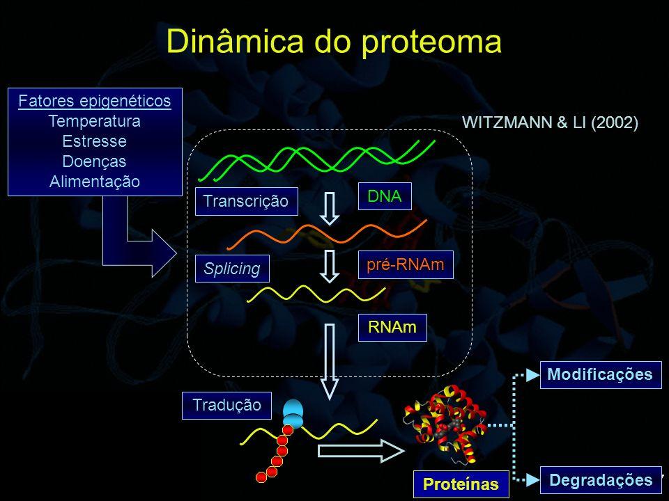 18 ELETROFORESE DE FLUORESCÊNCIA DIFERENCIAL EM GEL 2D (DIGE) controle Tratamento Cy5 UNLU et al., (1997); ISSAQ & VEENSTRA (2008)