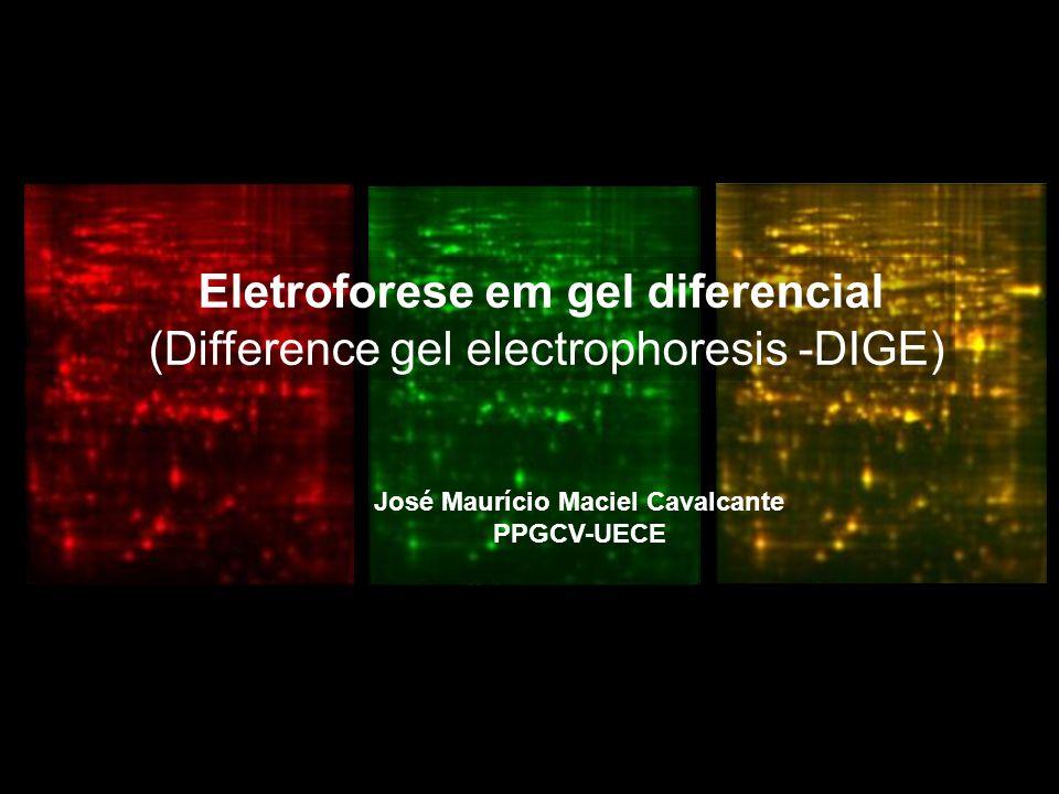 Eletroforese em gel diferencial (Difference gel electrophoresis -DIGE) É uma metodologia de eletroforese (2D) onde é utilizado até três diferentes amostras de proteínas marcadas com corantes fluorescentes (Ex.: Cy3, Cy5, Cy2) antes da eletroforese 2D.
