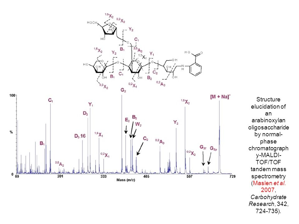 Structure elucidation of an arabinoxylan oligosaccharide by normal- phase chromatograph y-MALDI- TOF/TOF tandem mass spectrometry (Maslen et al. 2007,