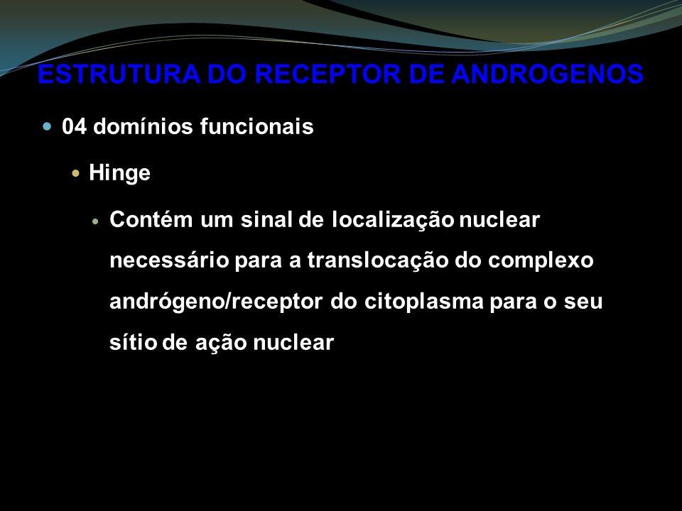 ESTRUTURA DO RECEPTOR DE ANDROGENOS 04 domínios funcionais Hinge Contém um sinal de localização nuclear necessário para a translocação do complexo andrógeno/receptor do citoplasma para o seu sítio de ação nuclear