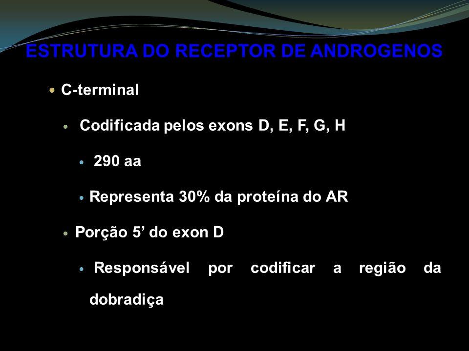 ESTRUTURA DO RECEPTOR DE ANDROGENOS C-terminal Codificada pelos exons D, E, F, G, H 290 aa Representa 30% da proteína do AR Porção 5 do exon D Responsável por codificar a região da dobradiça