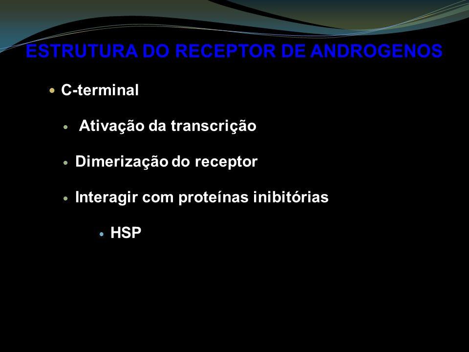 ESTRUTURA DO RECEPTOR DE ANDROGENOS C-terminal Ativação da transcrição Dimerização do receptor Interagir com proteínas inibitórias HSP