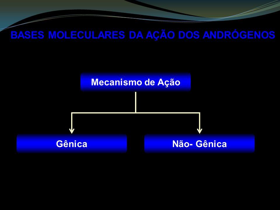 Mecanismo de Ação GênicaNão- Gênica