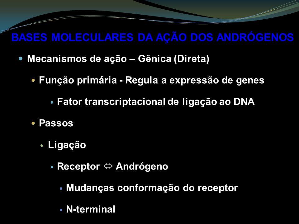 Mecanismos de ação – Gênica (Direta) Função primária - Regula a expressão de genes Fator transcriptacional de ligação ao DNA Passos Ligação Receptor A