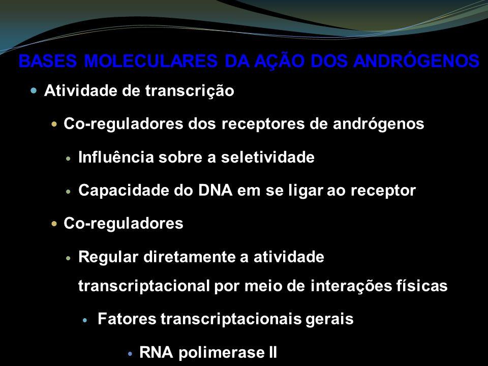 Atividade de transcrição Co-reguladores dos receptores de andrógenos Influência sobre a seletividade Capacidade do DNA em se ligar ao receptor Co-reguladores Regular diretamente a atividade transcriptacional por meio de interações físicas Fatores transcriptacionais gerais RNA polimerase II BASES MOLECULARES DA AÇÃO DOS ANDRÓGENOS