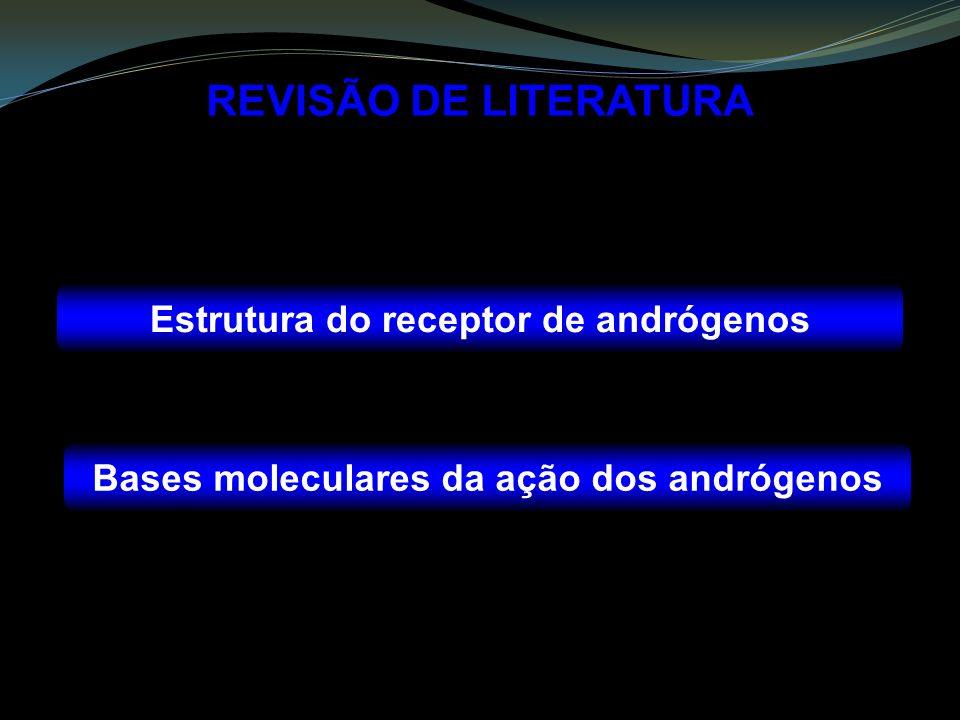 REVISÃO DE LITERATURA Estrutura do receptor de andrógenos Bases moleculares da ação dos andrógenos