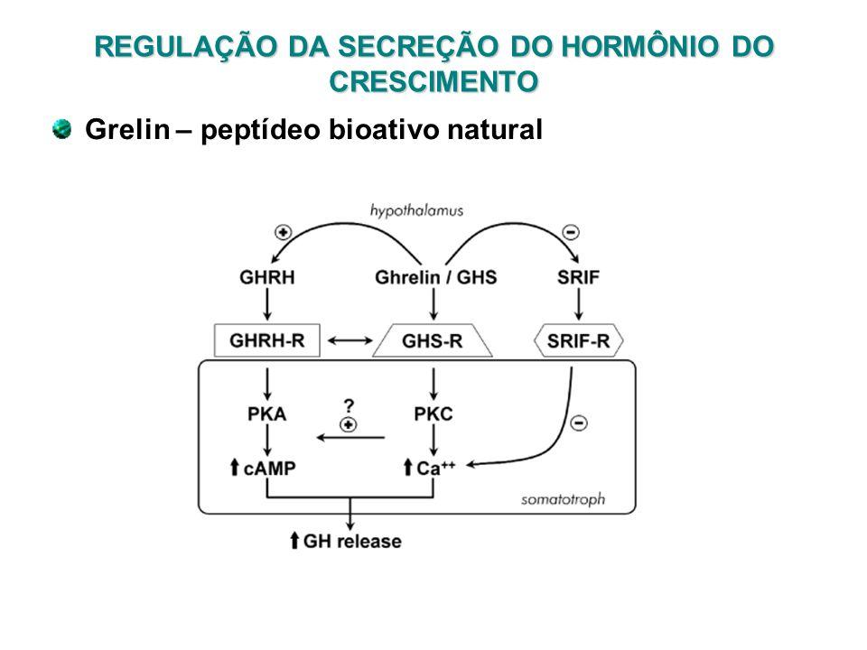 Grelin – peptídeo bioativo natural REGULAÇÃO DA SECREÇÃO DO HORMÔNIO DO CRESCIMENTO