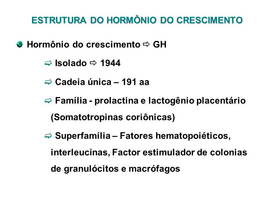 Hormônio do crescimento GH Isolado 1944 Cadeia única – 191 aa Família - prolactina e lactogênio placentário (Somatotropinas coriônicas) Superfamília –