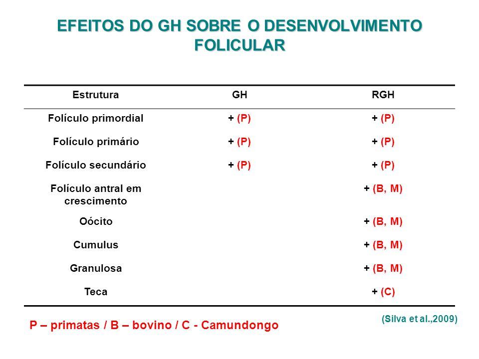 EstruturaGHRGH Folículo primordial+ (P) Folículo primário+ (P) Folículo secundário+ (P) Folículo antral em crescimento + (B, M) Oócito+ (B, M) Cumulus
