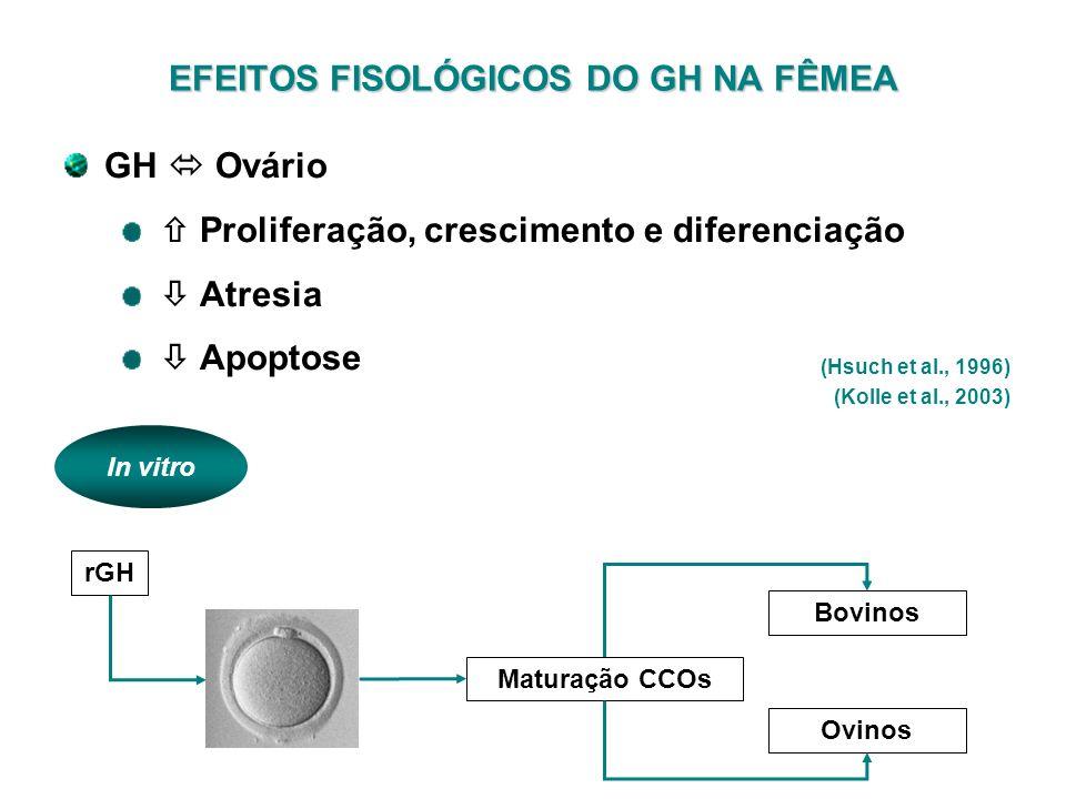 EFEITOS FISOLÓGICOS DO GH NA FÊMEA (Hsuch et al., 1996) (Kolle et al., 2003) GH Ovário Proliferação, crescimento e diferenciação Atresia Apoptose In v