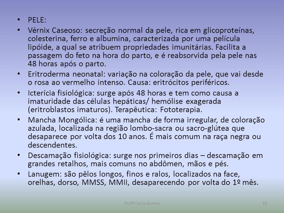 PELE: Vérnix Caseoso: secreção normal da pele, rica em glicoproteínas, colesterina, ferro e albumina, caracterizada por uma película lipóide, a qual s
