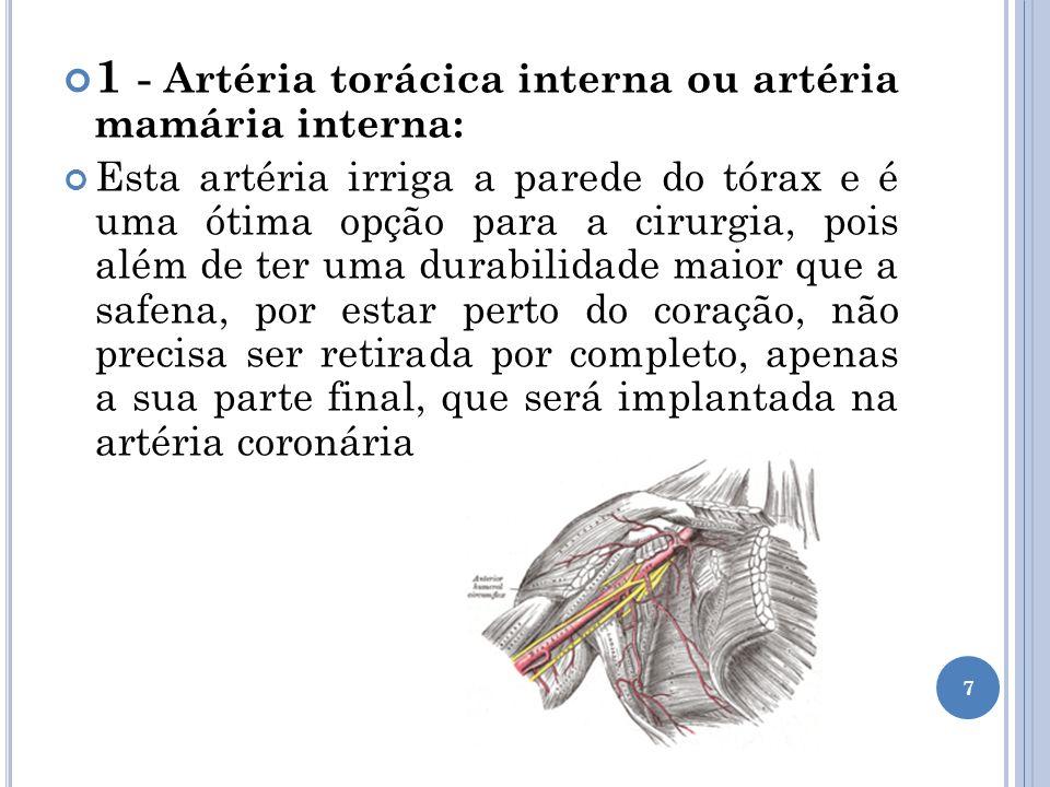 2- Artéria radial: Esta artéria irriga o antebraço e é uma ótima opção para ser utilizada como enxerto.
