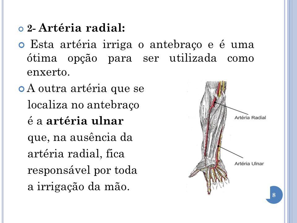 3- Artéria gastroepiplóica: Artéria responsável por irrigar parte do estômago e que, por estar abaixo do coração, pode ser utilizada como enxerto.