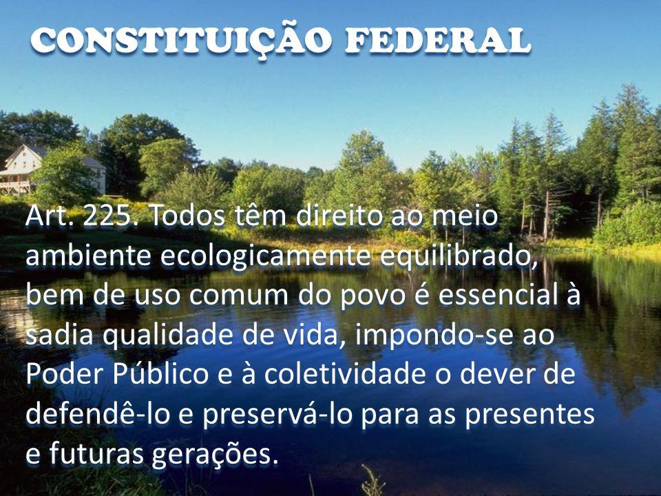 CONSTITUIÇÃO FEDERAL Art.225. § 3º.