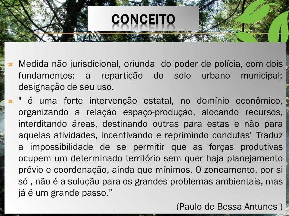 o conceito de zoneamento ambiental é uma idéia contemporânea à idéia de urbanismo e que foi através do planejamento das grandes cidades industriais que veio a surgir a necessidade de serem definidos espaços urbanos direcionados para determinadas finalidades.