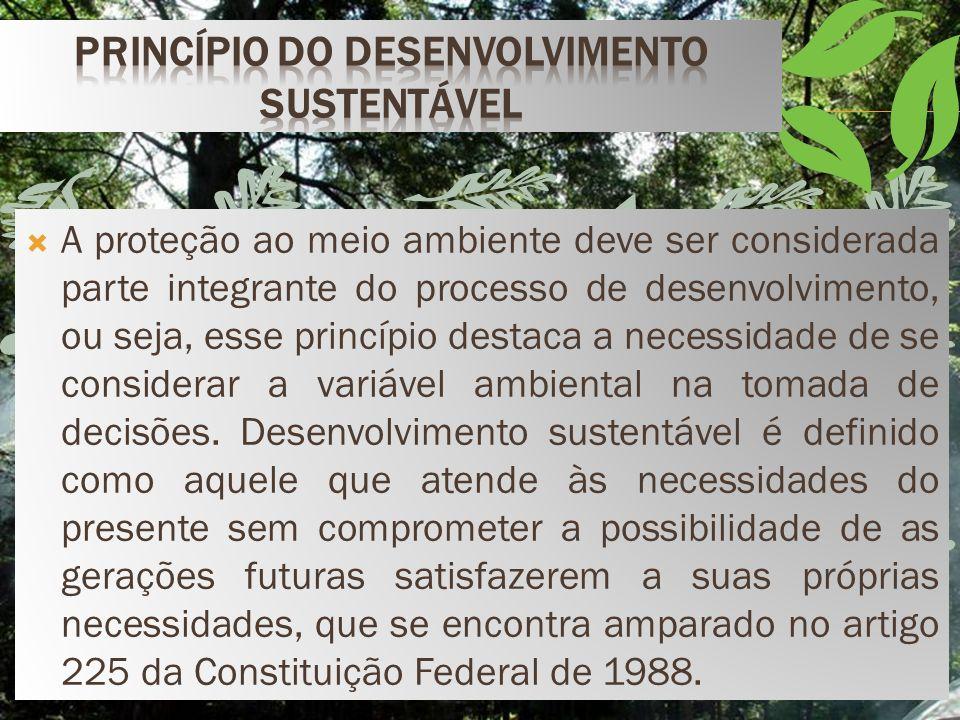 A proteção ao meio ambiente deve ser considerada parte integrante do processo de desenvolvimento, ou seja, esse princípio destaca a necessidade de se considerar a variável ambiental na tomada de decisões.