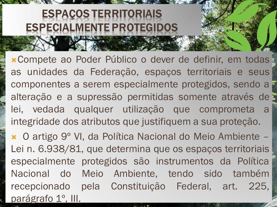 Lei n° 6.902/81, trata-se de um zoneamento ecológico econômico, que estabelecerá normas de uso, de acordo com o meio ambiente local.