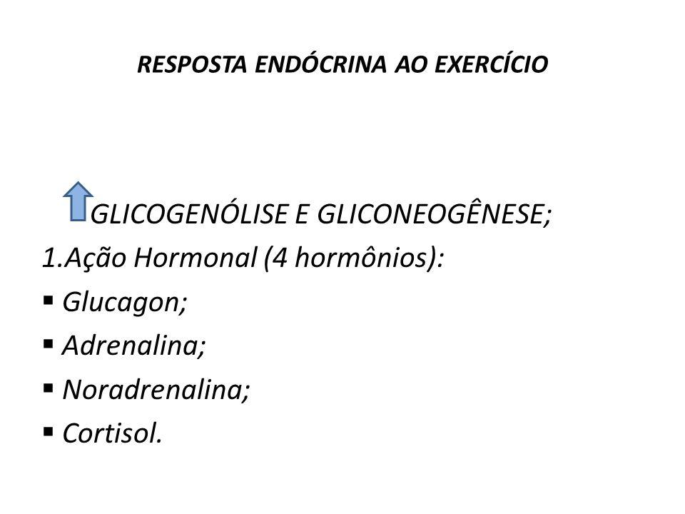 RESPOSTA ENDÓCRINA AO EXERCÍCIO Regulação do Metabolismo da Glicose durante o Exercício: GLICOGENÓLISE E GLICONEOGÊNESE; 1.Ação Hormonal (4 hormônios)