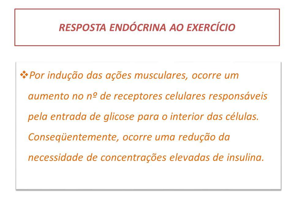 RESPOSTA ENDÓCRINA AO EXERCÍCIO Por indução das ações musculares, ocorre um aumento no nº de receptores celulares responsáveis pela entrada de glicose