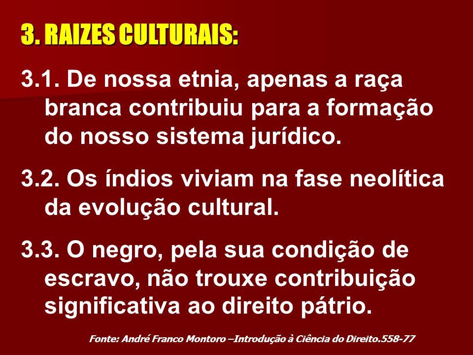 3.RAIZES CULTURAIS: 3.1.