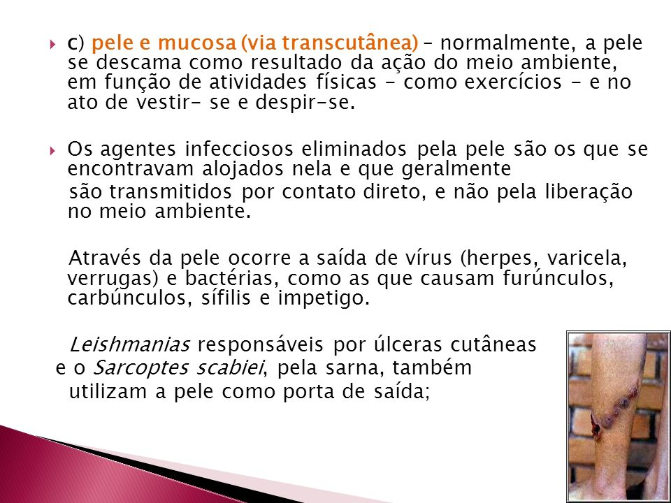 c ) pele e mucosa (via transcutânea) – normalmente, a pele se descama como resultado da ação do meio ambiente, em função de atividades físicas - como